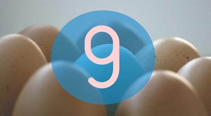 9 Usos curiosos de la cáscara de huevo