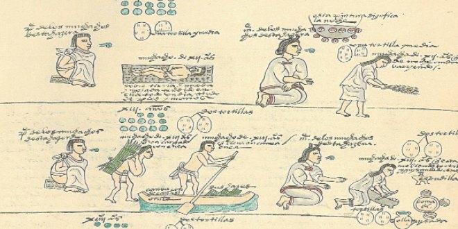 Folio 60. Castigos y tareas para niños de 11 a 14 años