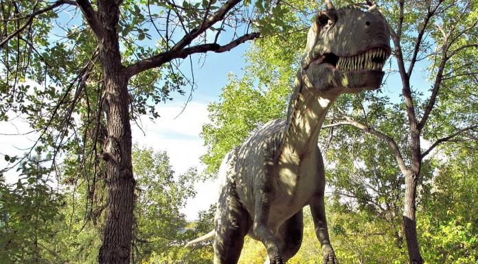Nuevas teorías sobre el fin de los dinosaurios