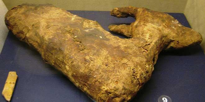 momia gacela