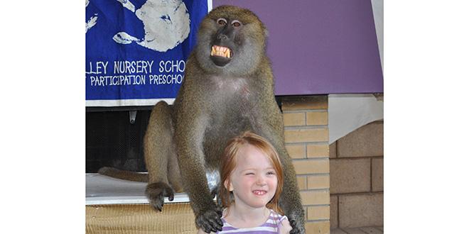 mono y niña