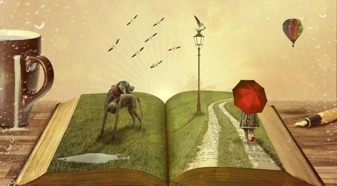 Los 10 mandamientos de todo amante de los libros