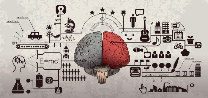 personas altamente sensibles, cómo funciona su cerebro