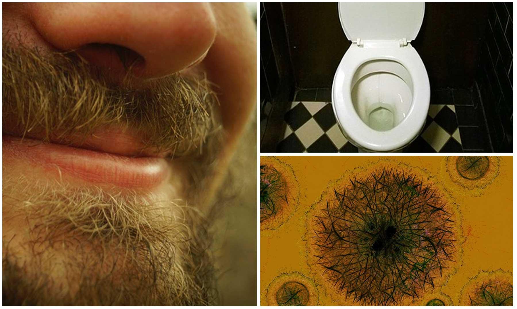 Barbas con m s g rmenes que un inodoro for Que es inodoro