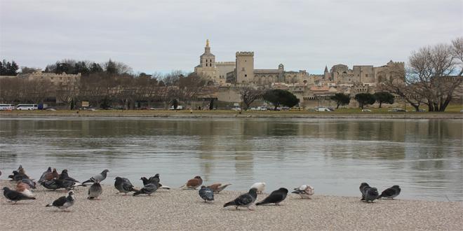 Palacio papal en Aviñón, Francia