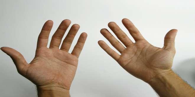 longitud dedos