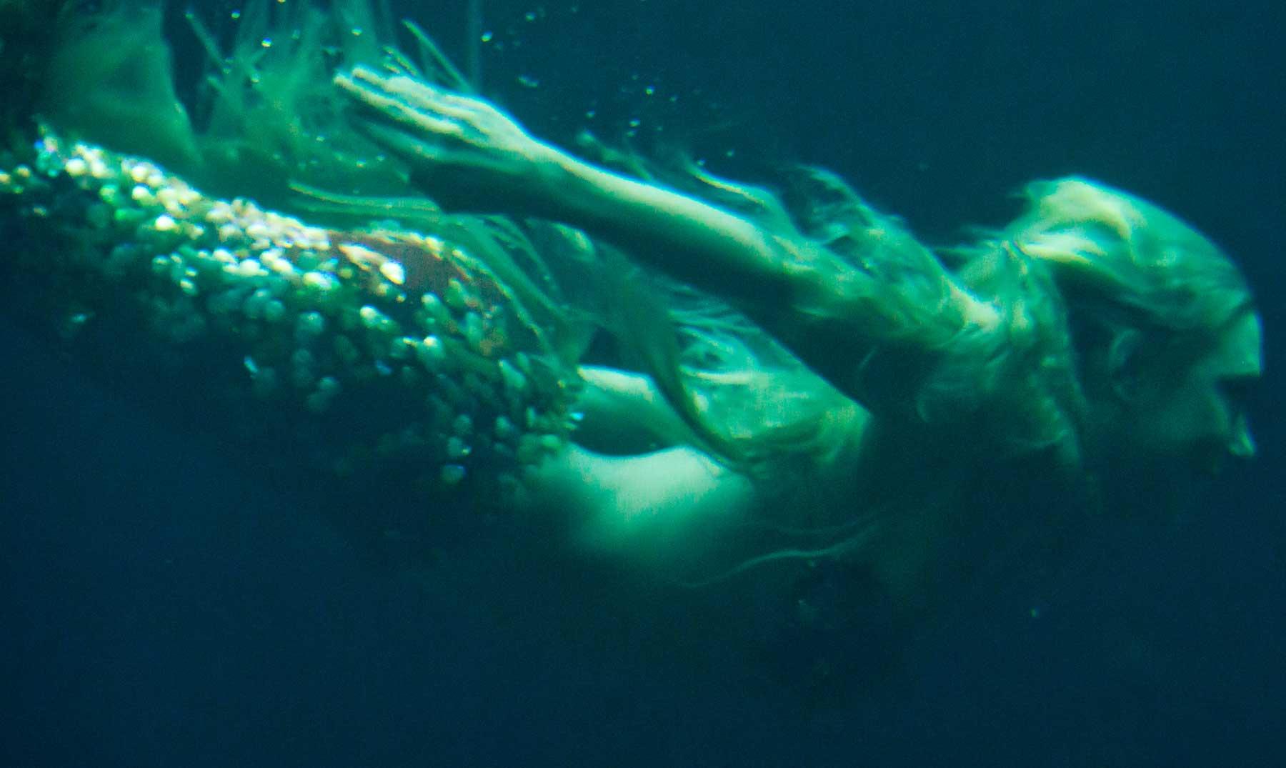 Quieres ser una sirena ahora puedes - Colorazione sirena pagina sirena ...