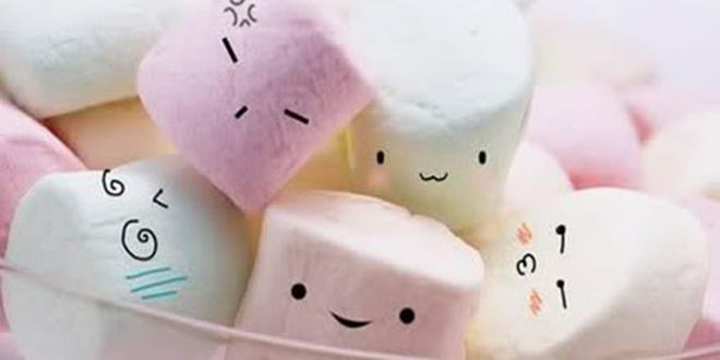 Marshmallow (Copy)