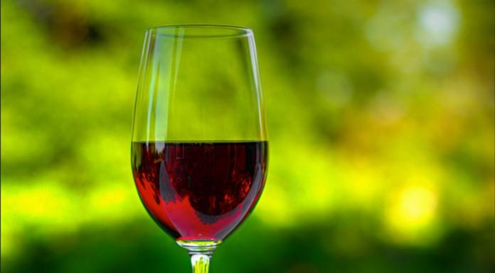 ¿De verdad beber alcohol mata nuestras neuronas?