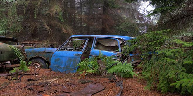 chatillon-car-graveyard-abandoned-cars-cemetery-belgium-31 (Copy)