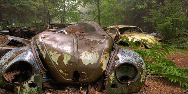 chatillon-car-graveyard-abandoned-cars-cemetery-belgium-92 (Copy)