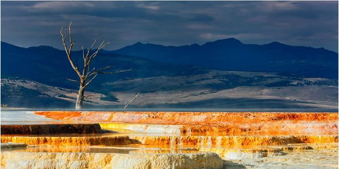 Minerva Terrace at Mammoth Hot Springs, Yellowstone National Park, Grand Tetons National Park, Wyoming, USA.