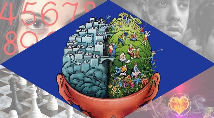 TEST: ¿Eres más racional o emocional?
