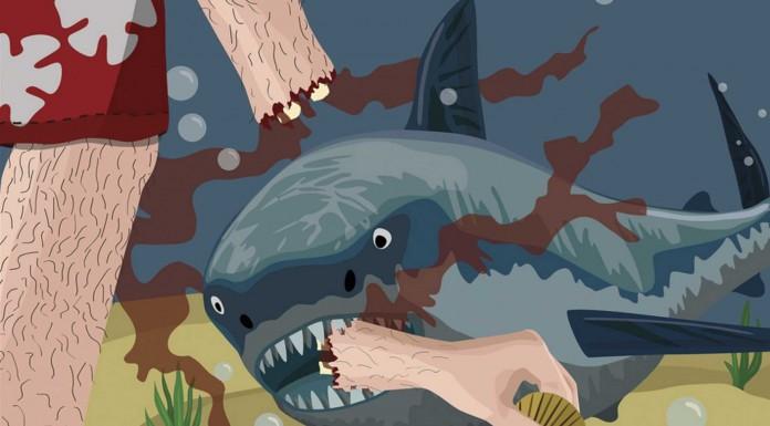 Razones por las que no te comerá un tiburón