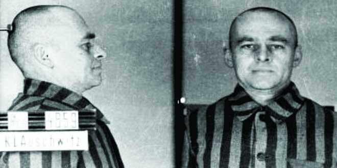 voluntario Auschwitz