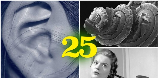 25 datos SORPRENDENTES sobre tus oídos