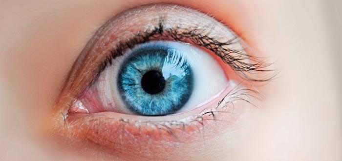 curiosidades de los ojos, ojos azules