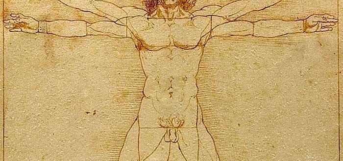 Hombre de Vitruvio 3