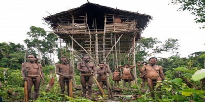 korowai-casas-en-los-arboles-tribu-papua (Copy)