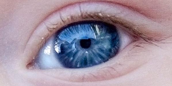 ojos datos, curiosidades de los ojos