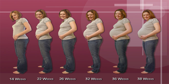 progreso de embarazo