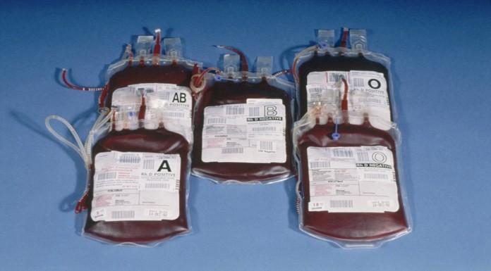 Grupos sanguíneos: datos SÚPER curiosos