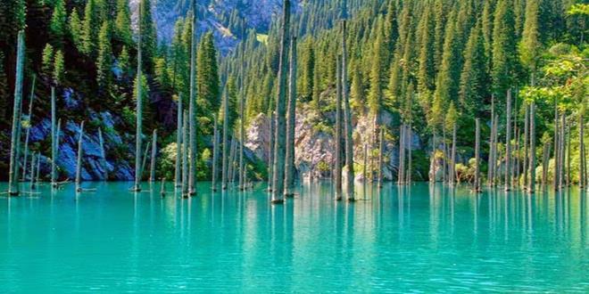 kaindy-lake-kazakhstan2 (Copy)