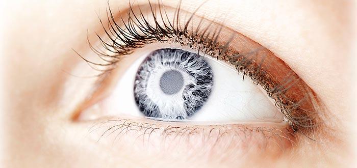 ojos grises, iris, por qué colores de ojos