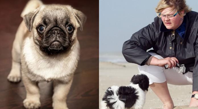 Este invento ¡traduce a tu perro!