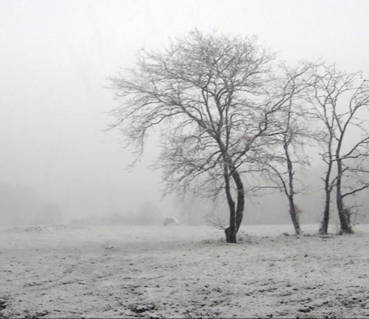 El año del invierno más LARGO: 1816