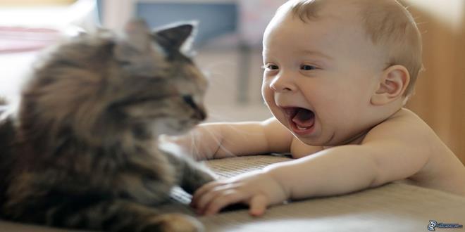 bebe-y-el-gato, (Copy)