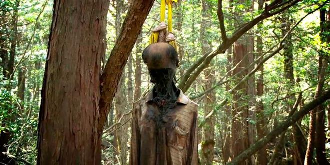 bosque de los suicidios, japón
