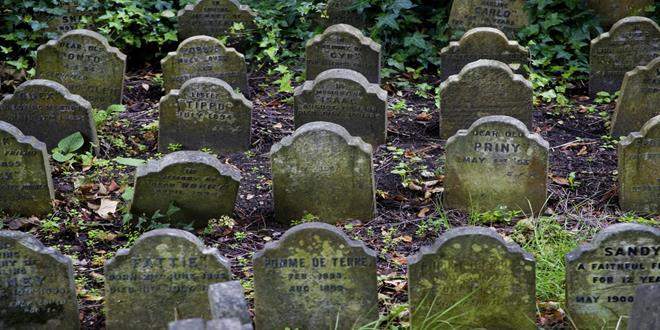 Resultado de imagen de cementerio mascotas hyde park