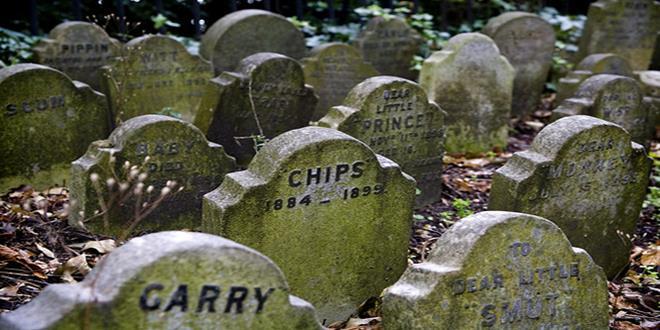 cementerio de animales de Hyde Park (4) (Copy)