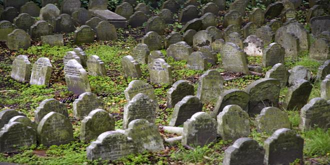 cementerio de animales de Hyde Park (5) (Copy)