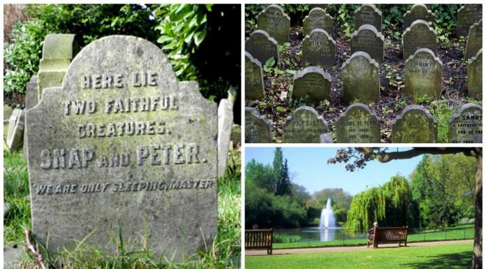 Descubre el cementerio de animales de Hyde Park