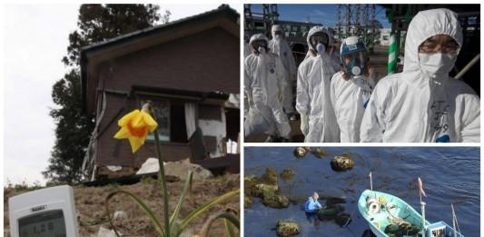 Fukushima: el impacto de la catástrofe en la actualidad