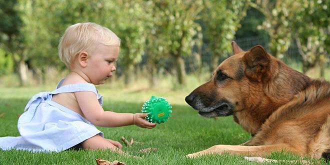 niño con perro (Copy)