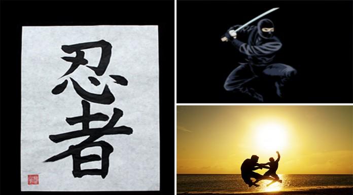 Ninjas: ¿mito o realidad?
