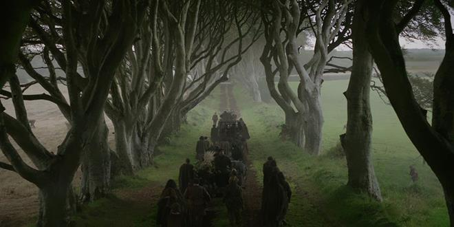 the-dark-hedges-tree-tunnel-15 (Copy)