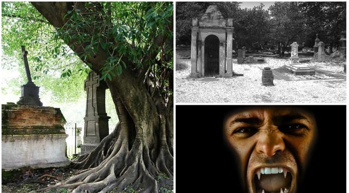 El árbol del vampiro (Leyenda mexicana)