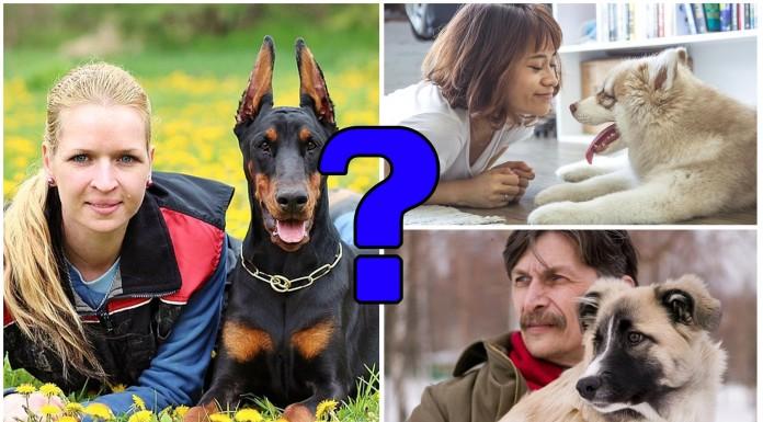 raza perro personalidad