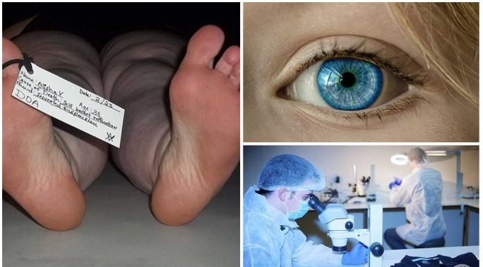 ¿Se puede saber la edad en los ojos de un cadáver?