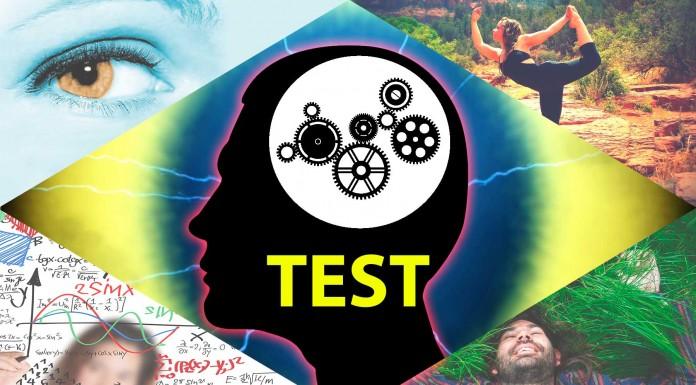 TEST: ¿Qué tipo de inteligencia destaca en ti?