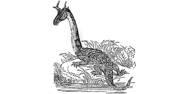 ¡¿3 dinosaurios que convivieron con humanos en África?!