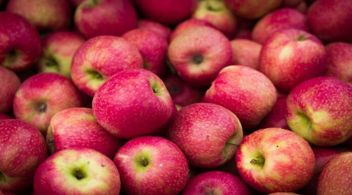 Las semillas de manzana tienen cianuro ¿Son venenosas