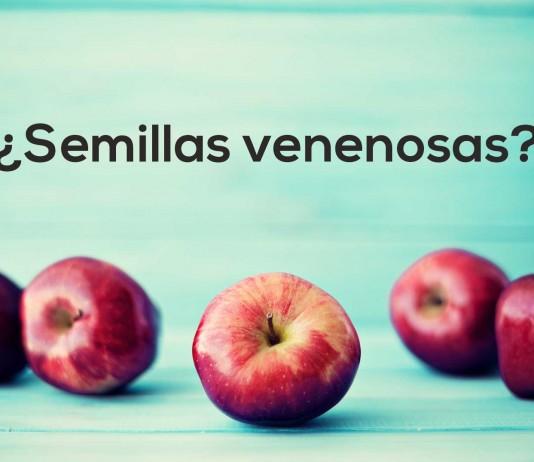 Semillas de manzana venenosas, ¿Mito o realidad?