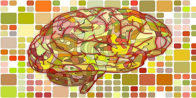 Cerebro perezoso