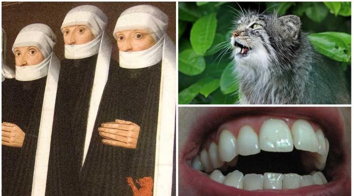 2 casos de histeria colectiva en conventos de monjas