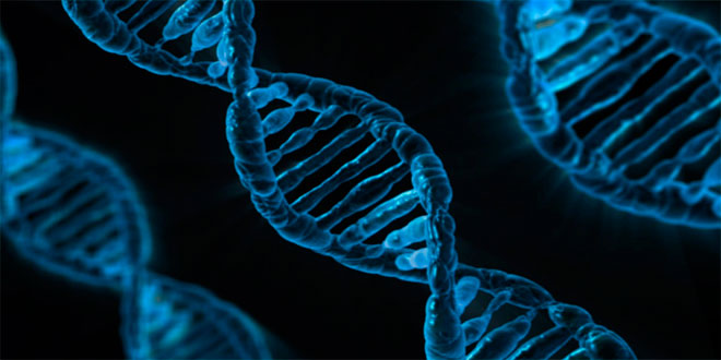 ¿En qué mes naciste? ¡Estas son tus alergias según tu ADN y nacimiento!